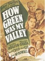 奥斯卡最佳影片: 《青山翠谷》,1941