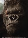 英文影评: 金刚 King Kong (2005)