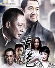 电视剧《青瓷》剧情1-40集大结局分集剧情